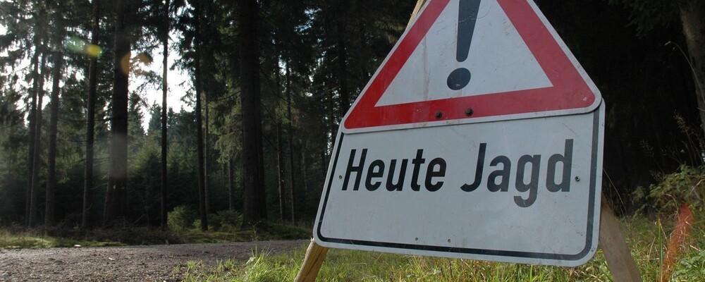 © Bayerischer Jagdverband
