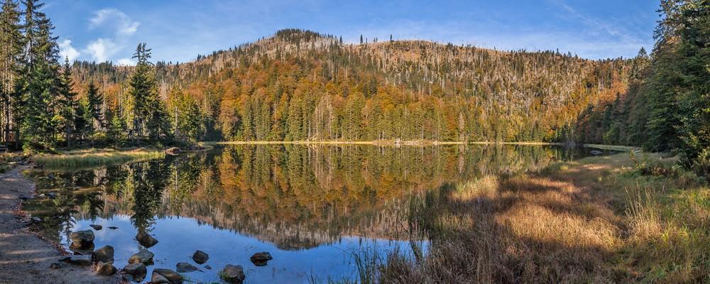 © Nationalparkverwaltung Bayerischer Wald