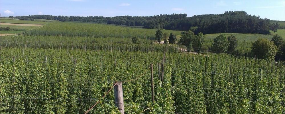 landwirtschaft, © Funkhaus Landshut